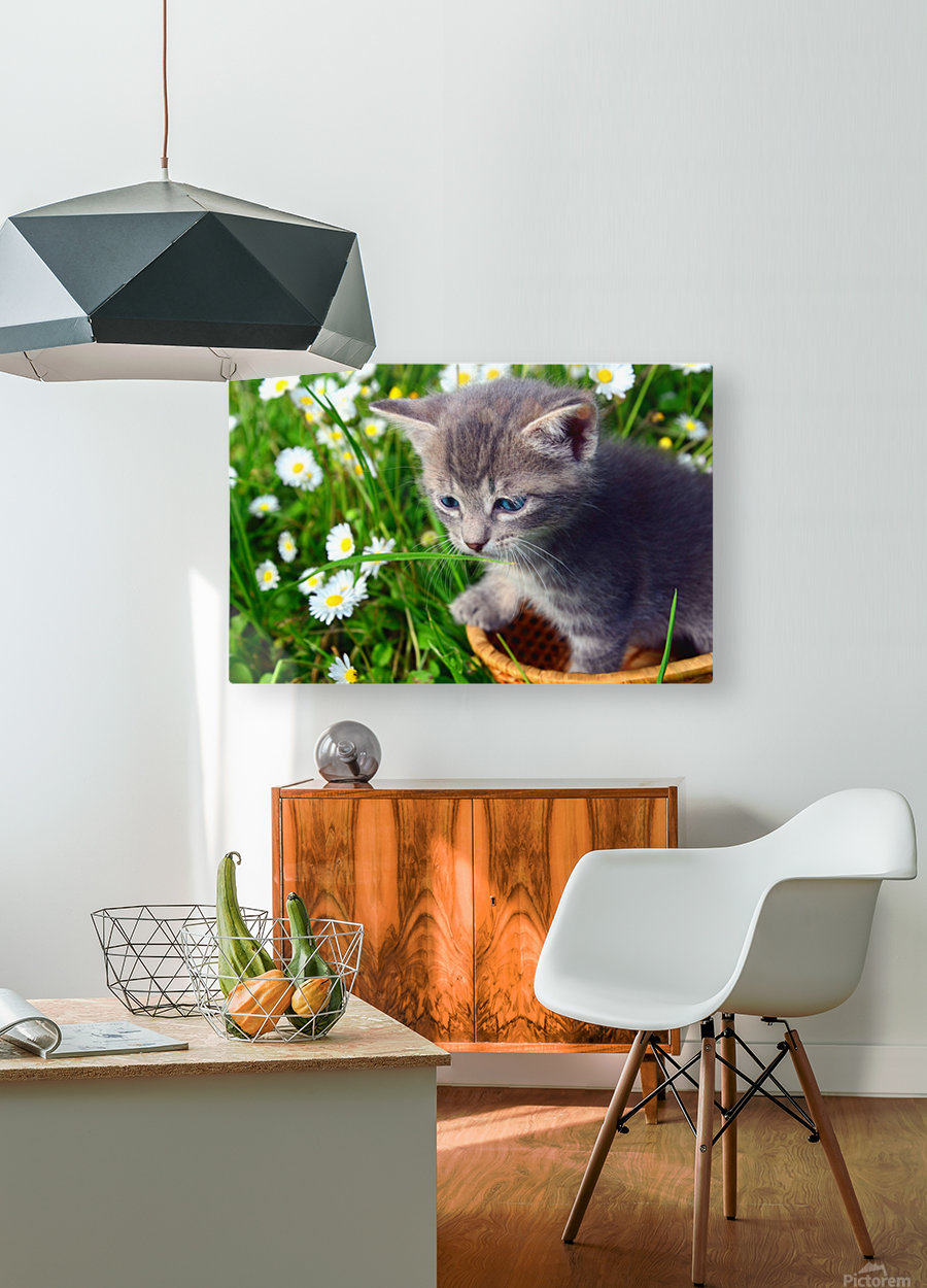 Smell the grass  HD Metal print with Floating Frame on Back