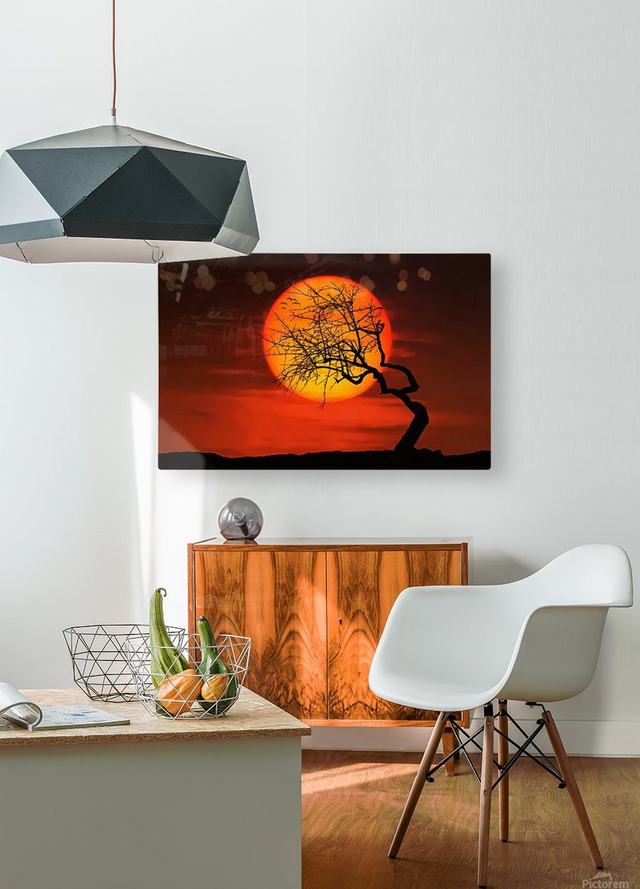 Bird on Sun  HD Metal print with Floating Frame on Back