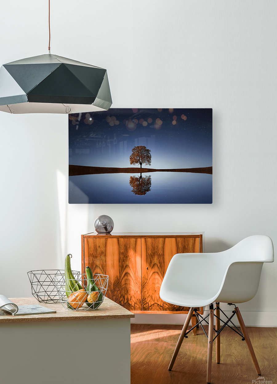 Reflection tre  HD Metal print with Floating Frame on Back