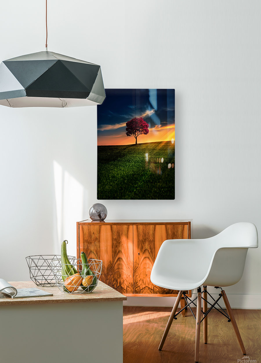 Awesome Solitude  HD Metal print with Floating Frame on Back