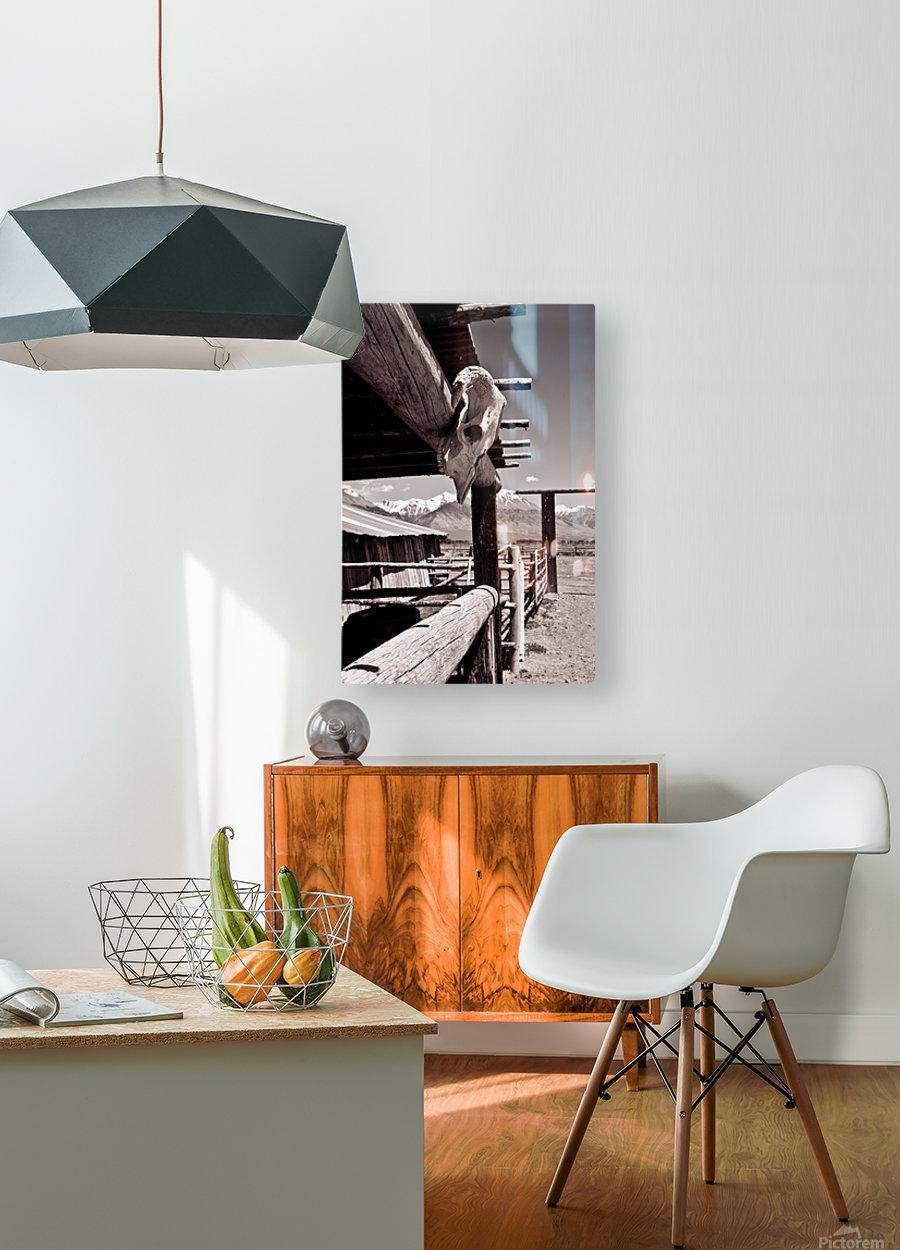 ©lou Freeman Wild West Cowboy Art 1020 21  HD Metal print with Floating Frame on Back