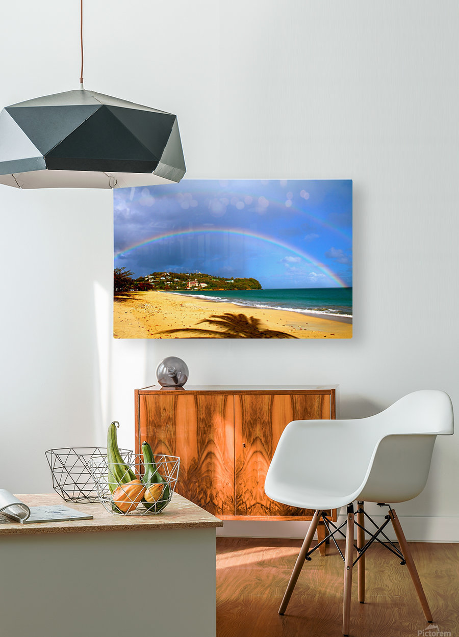Rainbow  HD Metal print with Floating Frame on Back