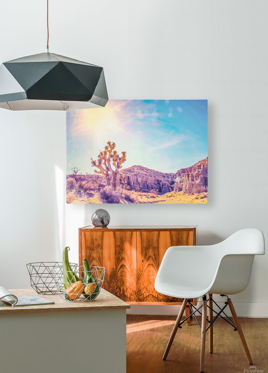 cactus at the desert in summer with strong sunlight  HD Metal print with Floating Frame on Back
