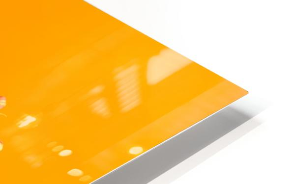 Orange scent HD Sublimation Metal print