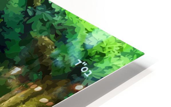 ART  Pinchos  WATER  Baal shem tov VR HD Sublimation Metal print