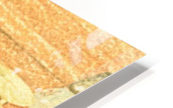 image1 (7) HD Sublimation Metal print