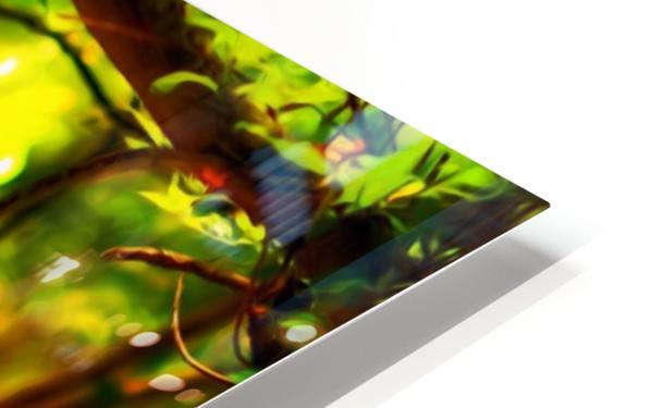 TREEgirl2 HD Sublimation Metal print