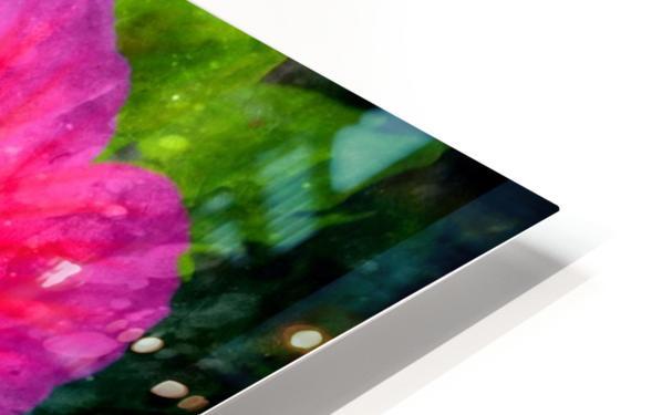 Fleurs d'artifices HD Sublimation Metal print