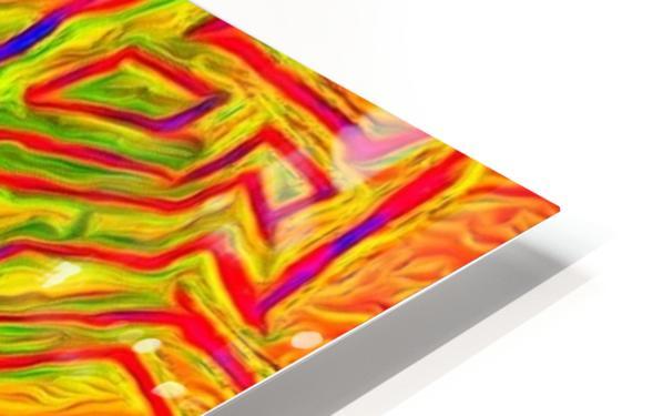 fern HD Sublimation Metal print