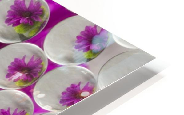 FLOWERS REFRACTION 8 HD Sublimation Metal print