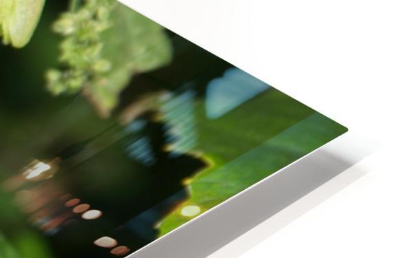 Hop cones HD Sublimation Metal print
