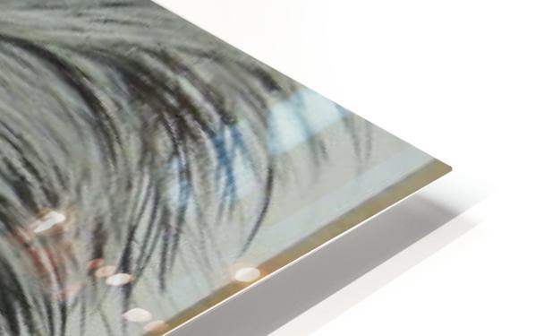 427494_396066667143490_766091326_n HD Sublimation Metal print