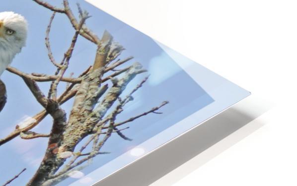 NativeTenCommandments2 Impression de sublimation métal HD