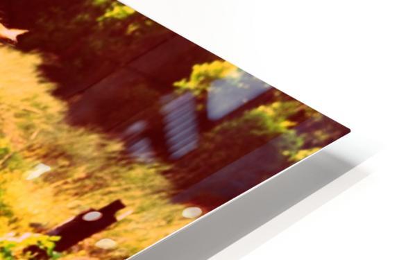 DSC_2554_V2 HD Sublimation Metal print