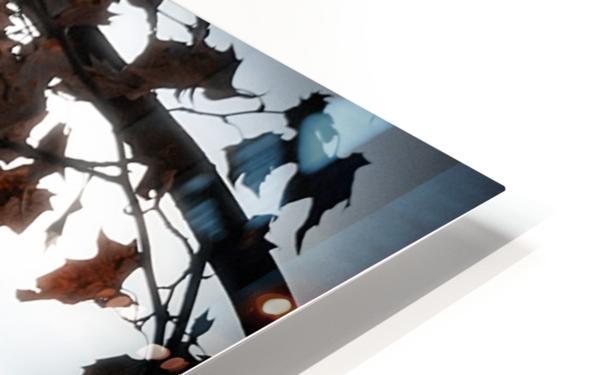 Autumn in Paris HD Sublimation Metal print