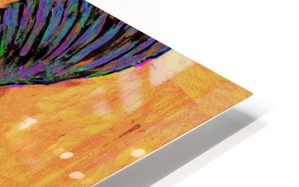 HUMMINGBIRD ON YELLOW HD Sublimation Metal print