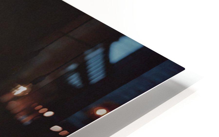 Australian Ghost  HD Sublimation Metal print