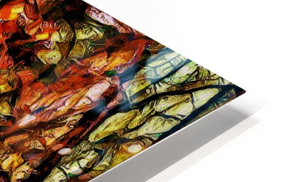 Hypersolvus Park HD Sublimation Metal print