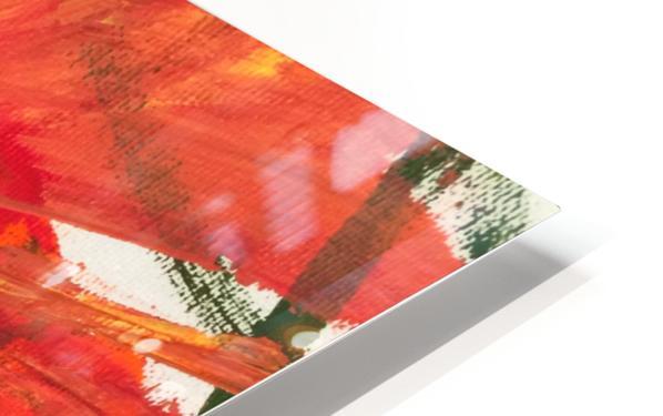 IMG_4741 HD Sublimation Metal print