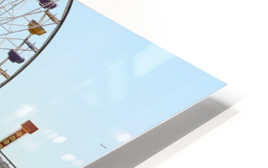 Sea Gulls & Santa Monica Pier HD Sublimation Metal print