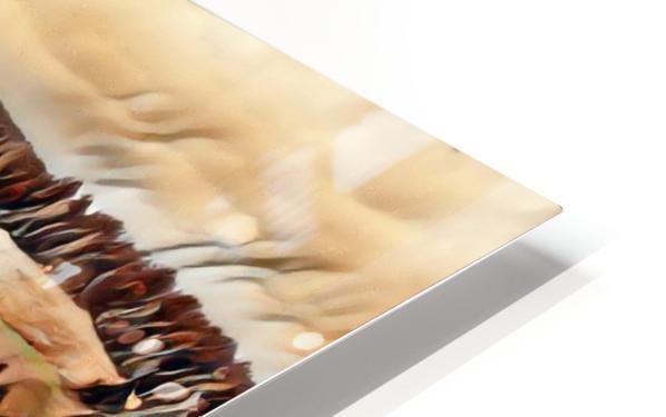 Mitchell Intermediate 3 HD Sublimation Metal print