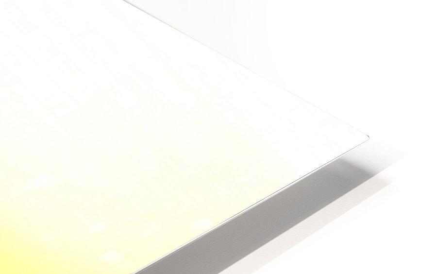 DSC_0439.JPG HD Sublimation Metal print