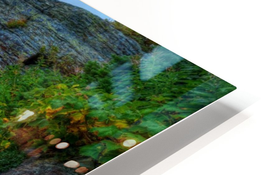 51 -2 Trail to Grinnell Glacier HD Sublimation Metal print