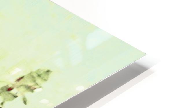 The Hummingbird HD Sublimation Metal print