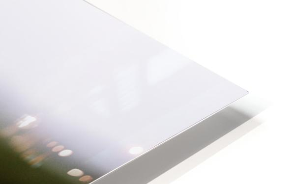 La pomme est dans le ver(re) HD Sublimation Metal print
