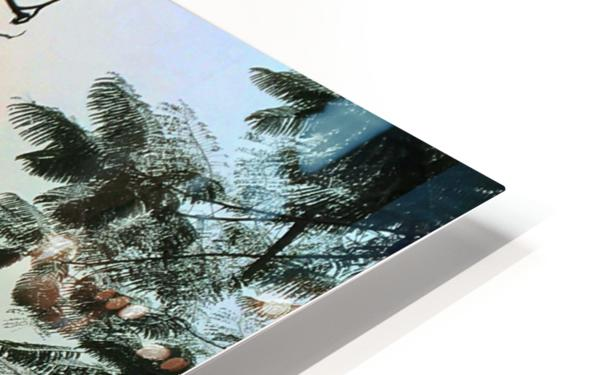 Solo HD Sublimation Metal print