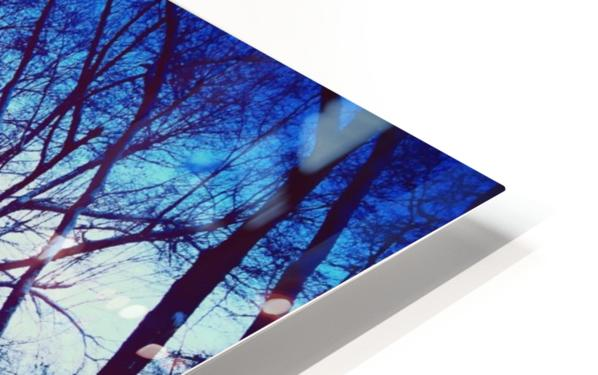 Snowy Delight HD Sublimation Metal print