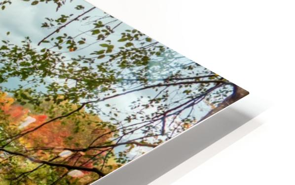 Wooden hedge blocks, falling autumn leaves, the water surface of the pond HD Sublimation Metal print
