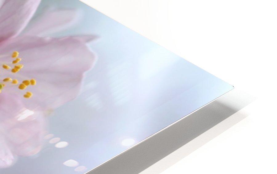 Pastels HD Sublimation Metal print