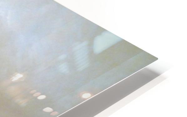 Blue Herons HD Sublimation Metal print