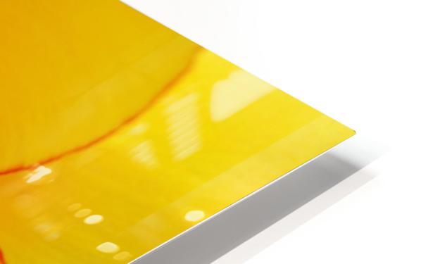 DSC00675 HD Sublimation Metal print