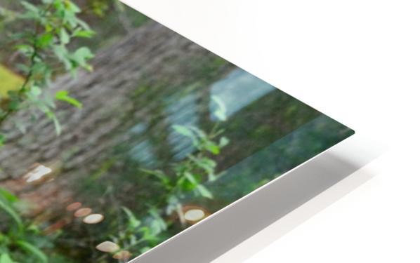 3299-Black Bear HD Sublimation Metal print