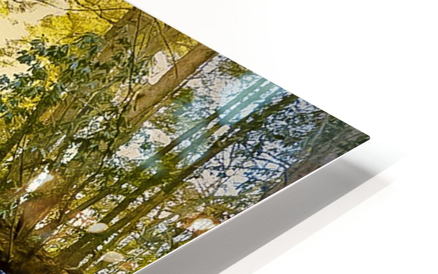 Waterfall in the Woods HD Sublimation Metal print