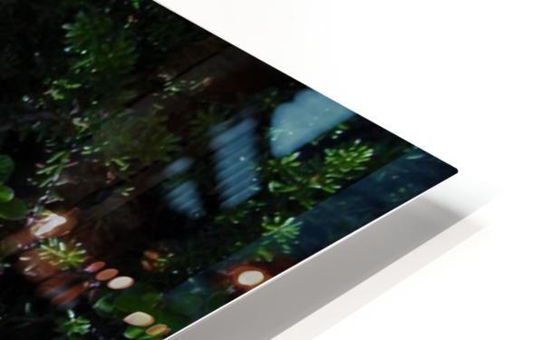 Mushroom HD Sublimation Metal print