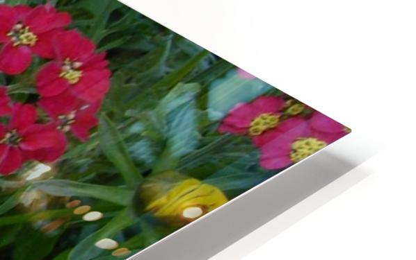 Red Flowers HD Sublimation Metal print