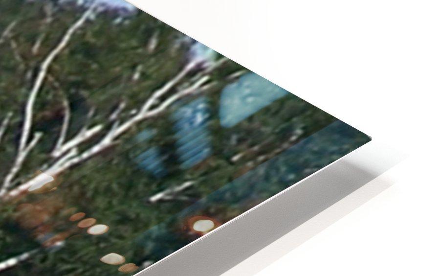 Sasquatch1 Impression de sublimation métal HD