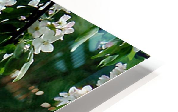 DazzleBlossoms Impression de sublimation métal HD