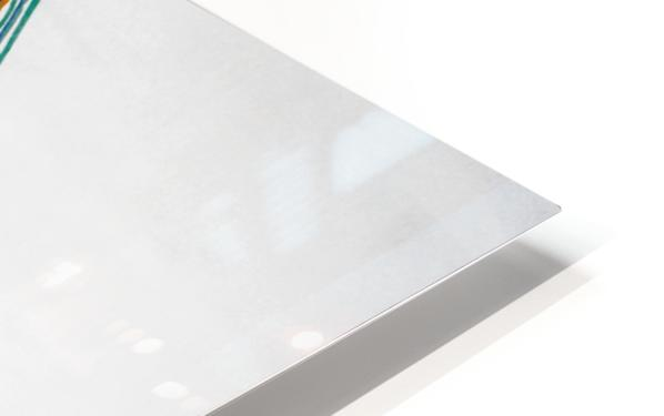Lignes HD Sublimation Metal print