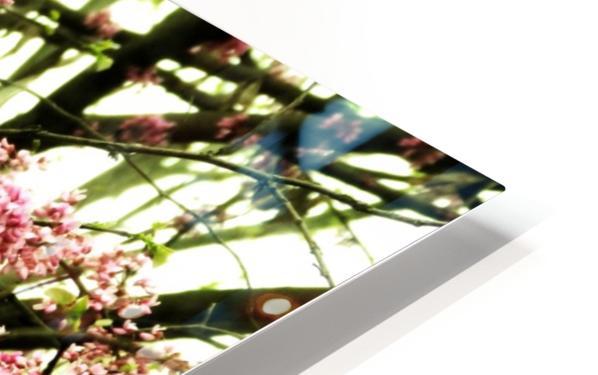 A (8) HD Sublimation Metal print
