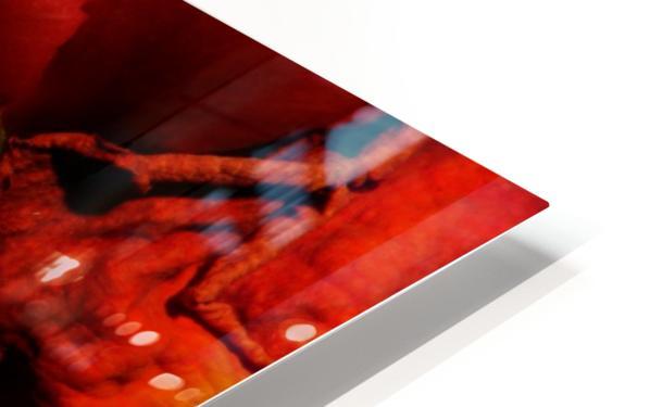 D (8) HD Sublimation Metal print