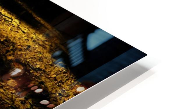 D (2) HD Sublimation Metal print