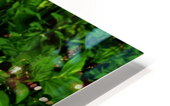 sofn-D38C2562 HD Sublimation Metal print