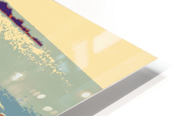 Swans HD Sublimation Metal print