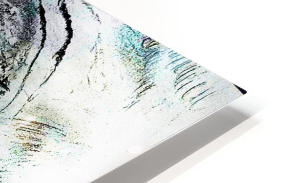 Reflection 2 HD Sublimation Metal print