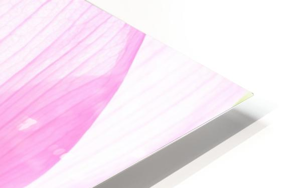 Lily Macro HD Sublimation Metal print