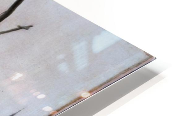 A Coastal Scene HD Sublimation Metal print
